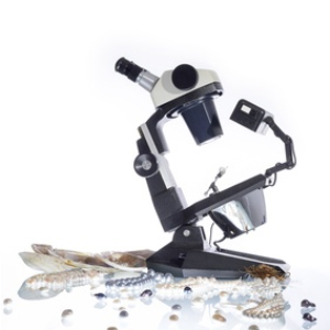 A microscope to analyze jewelry for writing insurance appraisals